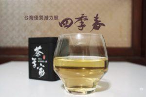 四季春-台灣茶-四季春烏龍茶-四季春茶-oolong tea- Sijichun Light Oolong Tea
